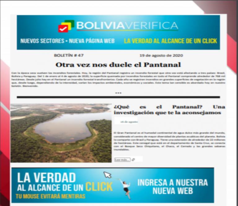 Boletín 47 – Otra vez nos duele el Pantanal – 2020