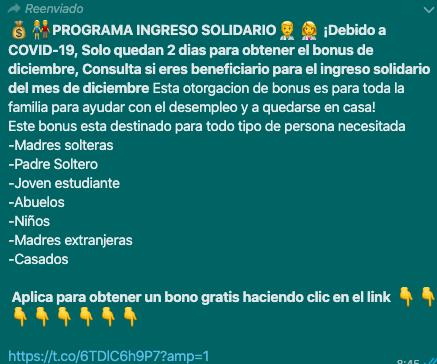 En Bolivia no existe un Programa de Ingreso Solidario