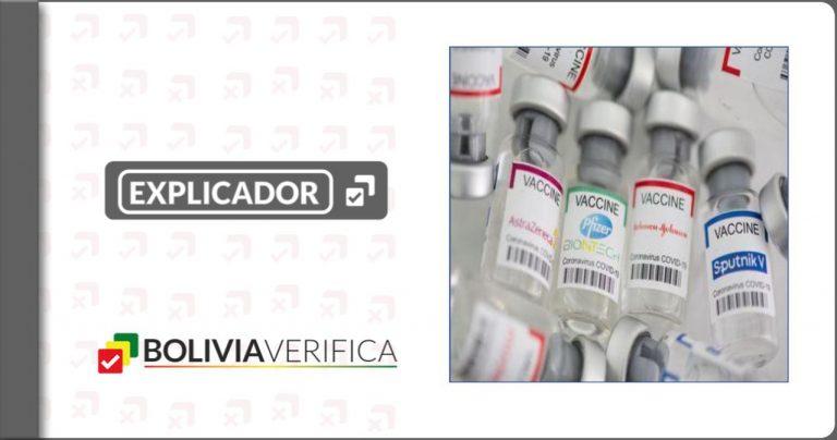 Cuatro de los ocho tipos de vacunas contra la Covid-19 aprobadas por la OMS llegaron a Bolivia