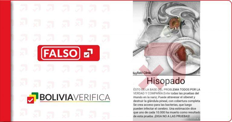 Los hisopados no dañan la glándula pineal ni el cerebro